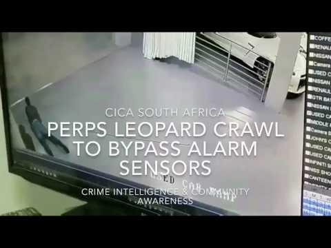 Criminals crawling to avoid Intrusion Detection / Burglar Alarm sensors at Infiniti Motors Melrose
