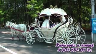 Свадебная прогулка Виктора и Татьяны