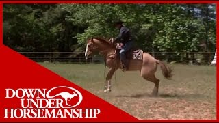 Clinton Anderson Presents: Soxie under Saddle