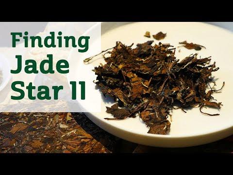 Finding Jade Star II - Aged White Tea