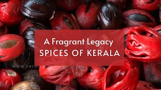 A Fragrant Legacy - Spices of Kerala