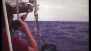 Mellish Reef ~ MidOcean Adventure