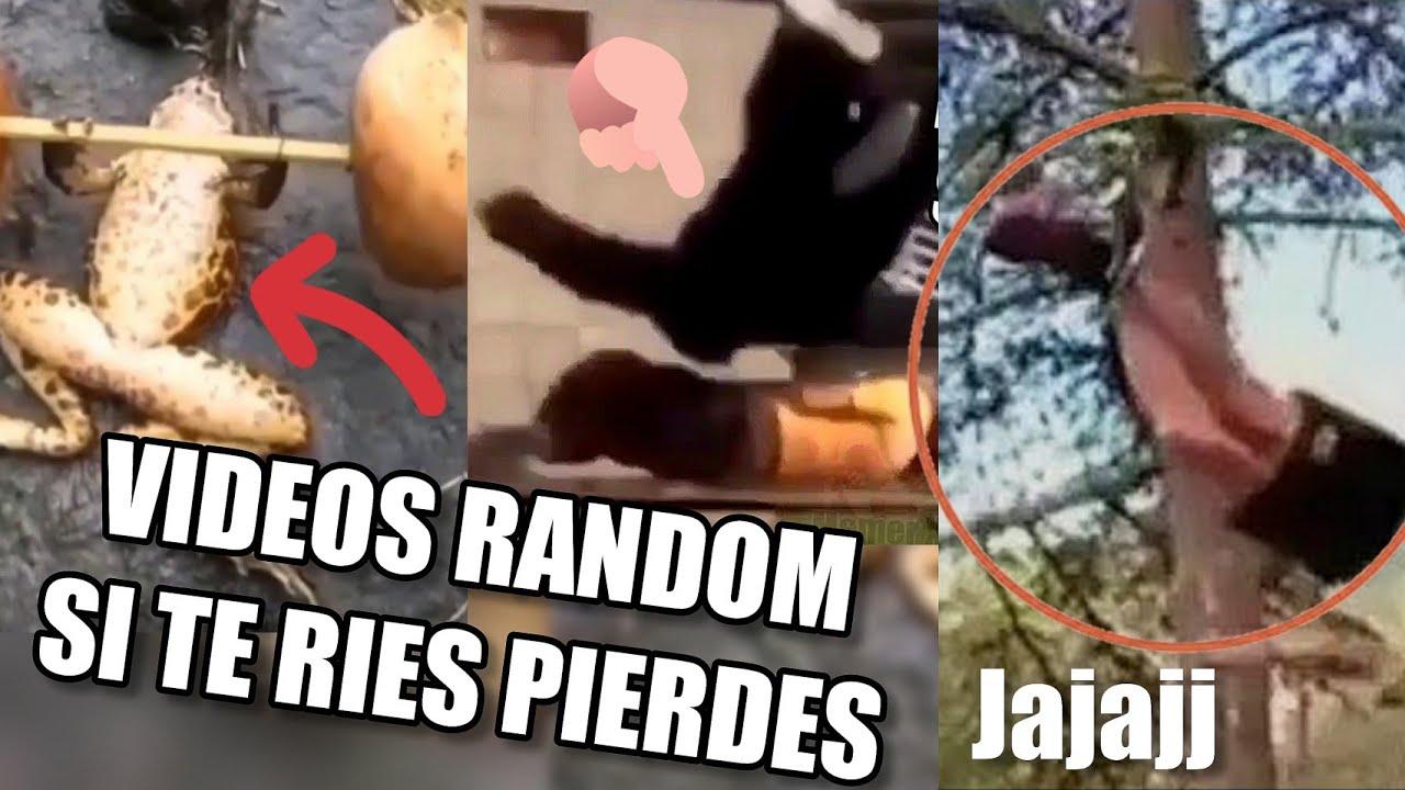 Los Mejores VIDEO MEMES RANDOM DE INTERNET #13, #17 y #20 Videos SI TE RIES PIERDES  (RESUBIDO)