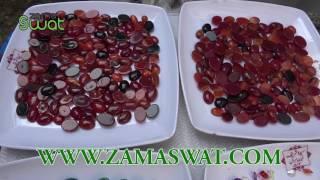 Repeat youtube video swat main 2 roza tijarti numaish