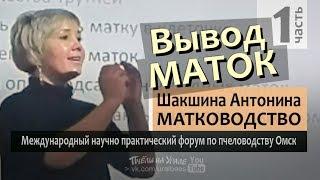 Матководство ч1 Вывод маток Смена матки Антонина Шакшина матковод эксперт ИО Форум по пчеловодству