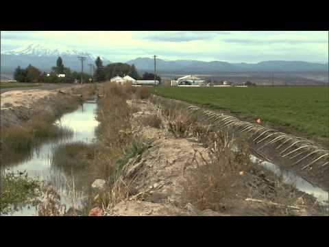 Watermaster -The History Of Water in The Deschutes Basin