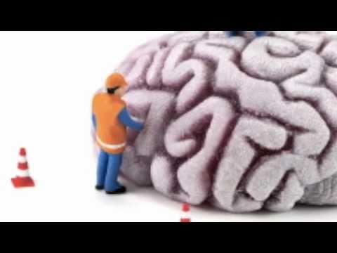 Brain Lobes (Occipital, Parietal, Temporal, Frontal Lobes, Cerebellum, & Brain Stem with lyrics)