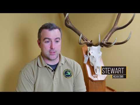 Perch fishing, DNR deer season overview, Ron Brimmer, walleye  Chowder MOOD TV #1803