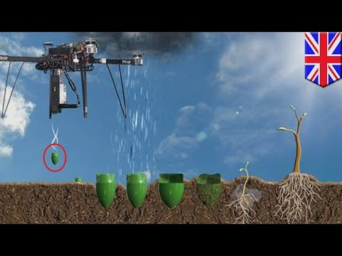 Seed bomb drones: UK-based start-up to plant one billion trees in one year using drones