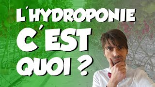 HYDROPONIE 🌿 C'EST QUOI ? (en 90 sec)