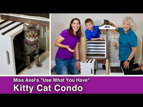 How to Build a Modern Cat Condo with Crates