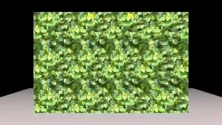 パラレル法(平行法)のためのステレオグラム 視力回復・眼精疲労に thumbnail