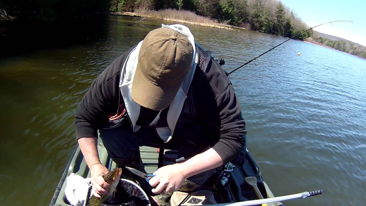 Small jig fishing glendale lake pa youtube for Pa out of state fishing license