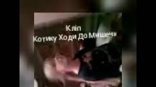 Кліп пародія Котику ходи до Мишечки