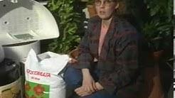 Siemen- Flora. Kauppakatu. 1988. Westmedia Oy. Rauma.