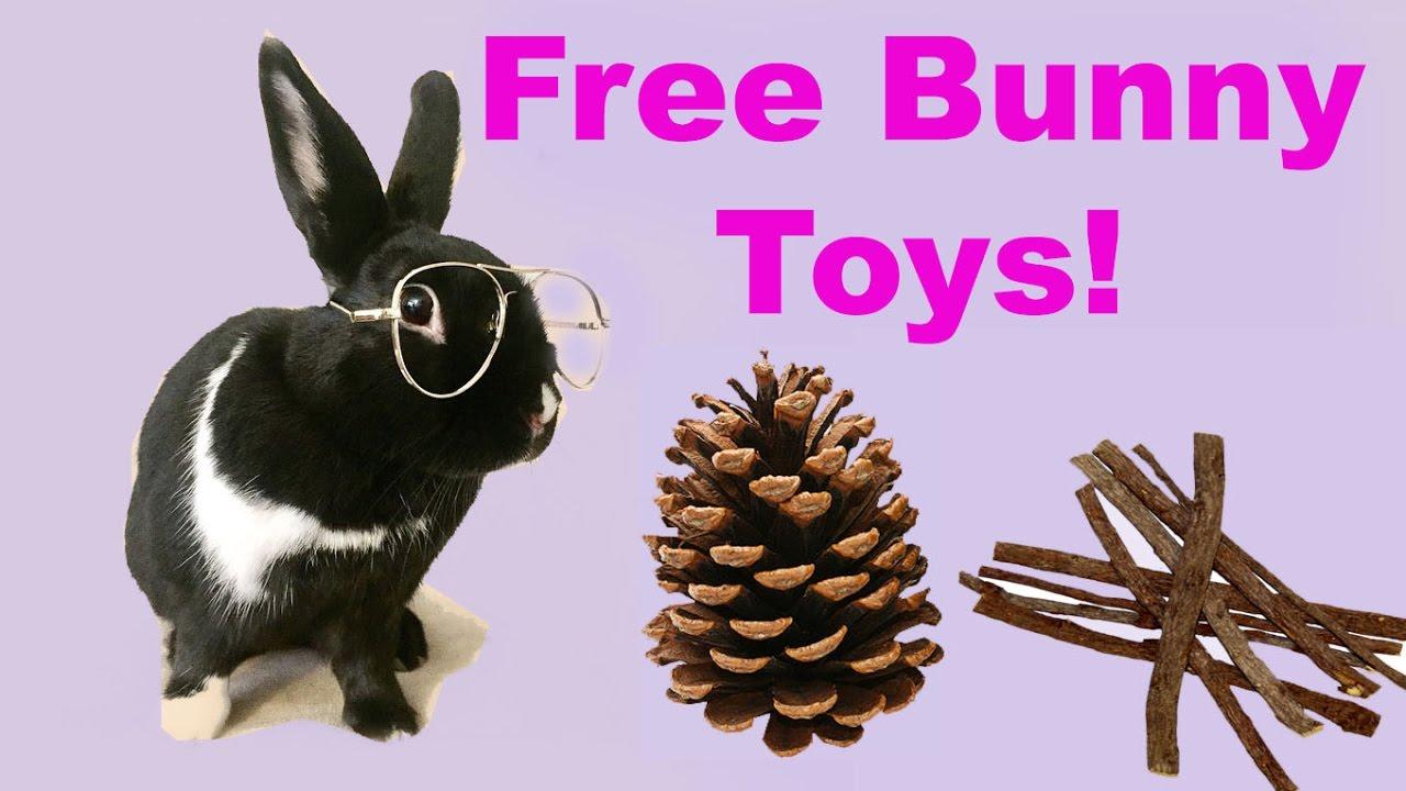 DIY FREE rabbit chew toys