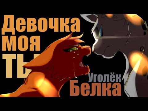 Animator Tribute   Коты Воители / Белка и Уголек - Девочка моя...ты...