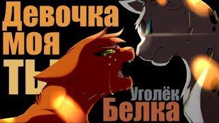 Animator Tribute | Коты Воители / Белка и Уголек - Девочка моя...ты...