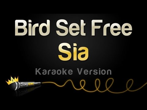 Sia - Bird Set Free (Karaoke Version)