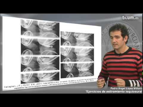 Ejercicios de estiramiento isquiosural