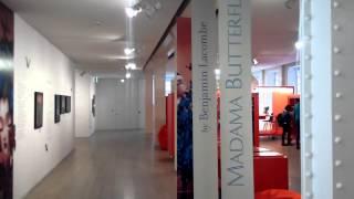 Visita a la exposición Madama Butterfly de Benjamín Lacombe
