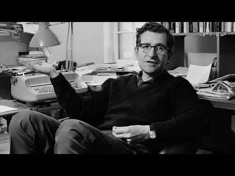 Young Noam Chomsky on America (1978)