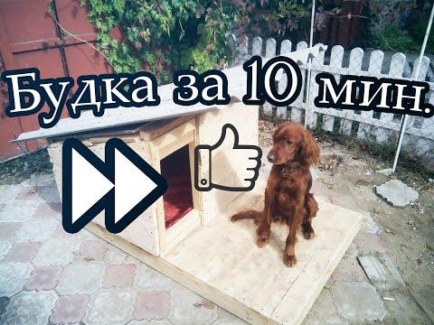 Как сделать теплую будку для собаки своими руками из подручных материалов