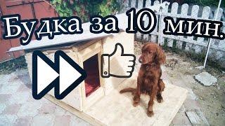 Будка для собаки за 10 мин своими руками. Build a doghouse in 10 minutes
