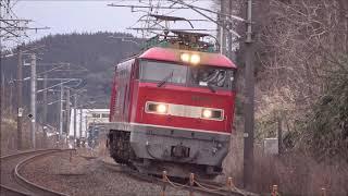 【木曜・午前の首カックン】北陸本線・列車撮影記 683系・681系・521系・EF510(細呂木駅付近)2020年2月20日