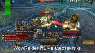 Тактика на Профессора Мерзоцида, WowRaider.Ru