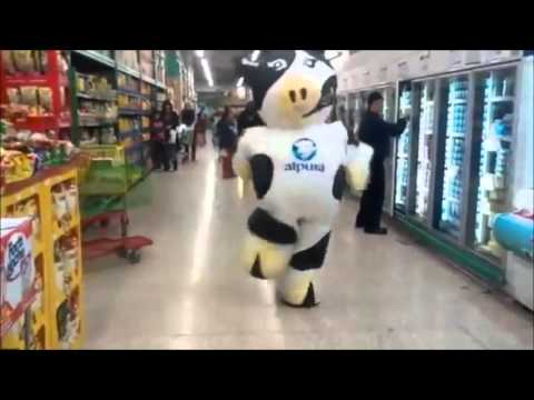 Wacky inflatable dancing Mexican cow ( intergalactic space band edition )