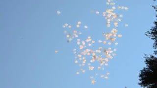 Запуск шаров на свадьбе. Все желания обязательно сбудутся!