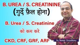 Serum Creatinine | Blood Urea | Kidney Failure | CKD | CRF | GRF | ARF