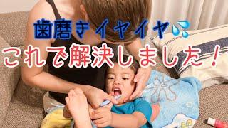 1歳児の息子が歯磨きを嫌がらなくなった理由。我が家の歯磨き方法!