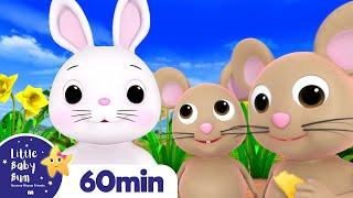 Little Bunny Foo Foo +More Nursery Rhymes and Kids Songs | Little Baby Bum