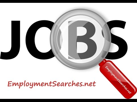 Employment Searches