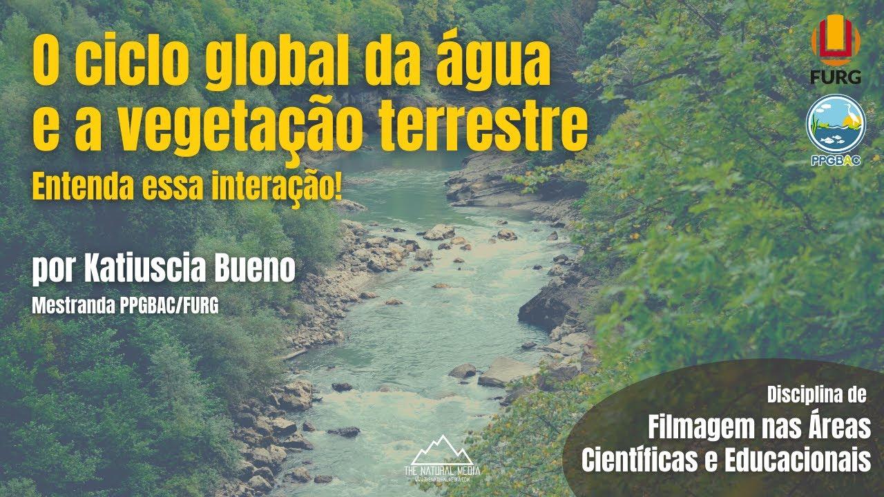 O Ciclo Global da Água e a Vegetação Terrestre - Entenda essa Interação