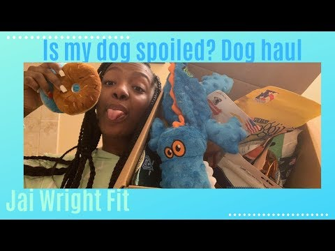 $200-puppy-haul-|-my-dog-is-spoiled-|-jai-wright-fit