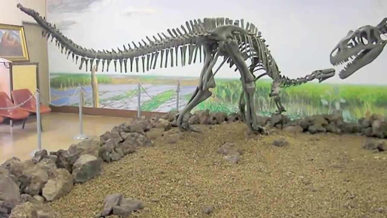 カンプトサウルス&アロサウルスの全身骨格化石@宝山ホール4階 - YouTube