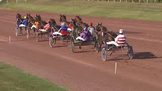 Vidéo de la course PMU PRIX DU HAUT RHIN