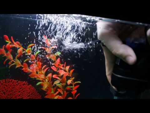 Фильтр для аквариума - Aquael Fan Micro ОБЗОР