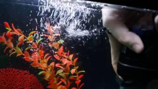 видео Внутренние фильтры для аквариума Aquael