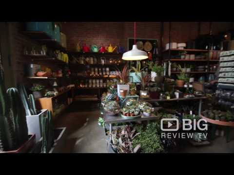 Sprout Home a Garden Store in New York offering garden Plants and Garden Supplies