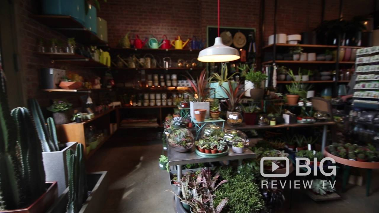 Superior Sprout Home A Garden Store In New York Offering Garden Plants And Garden  Supplies Design Inspirations