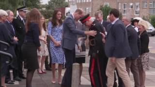 prince william rushes to help dignitary after dramatic fall