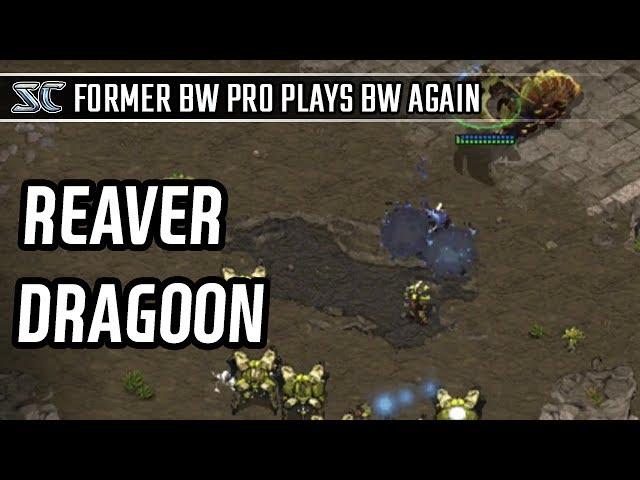 Reaver Dragoon vs Reaver Dragoon l StarCraft: Brood War l Crank