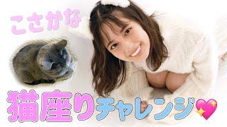 猫坂さん(小坂菜緒)がいろいろな猫の座りかたをやってみますにゃ!