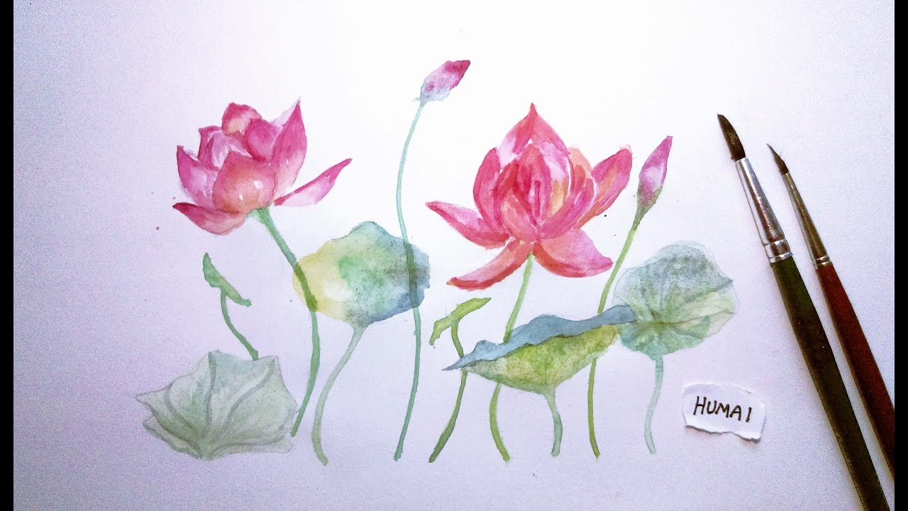 How To Paint Lotus In Watercolour Speedpaint Youtube