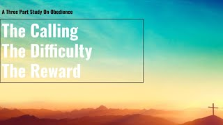 A Study on Obedience (Part 3) • The Reward