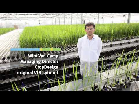Green biotech cluster - Plant sciences in Ghent, Flanders, Belgium